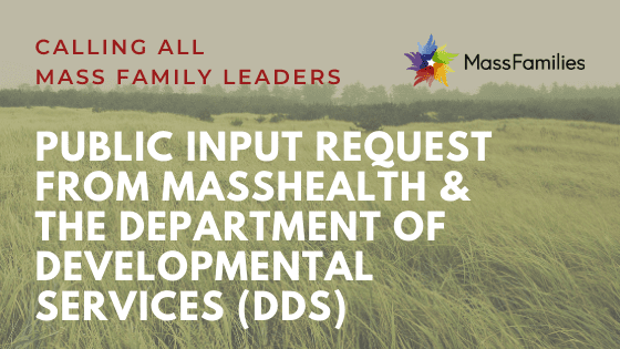 ACTION ALERT public input from masshealth and dds