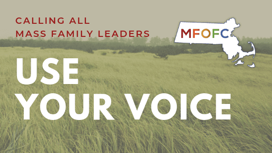 Calling all Mass Family Leaders Use your Voice