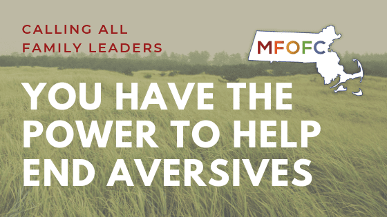 You Have the Power to Help End Aversives